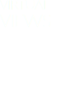 VIRTUAL VIEWS offering expert compositing of custom illustration with photography and 3D models to create believably-real reconstructions of ancient life and architecture
